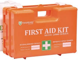 First Aid Kit with ABS Plastic Body, Portable, Light Weight Transparent, Wall-Mounting with contents, Approximate Size (30cm x 32cm x 11cm)